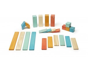Tegu 24 piezas  Tegu