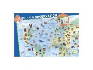 Puzzle observación animales del mundo  Djeco